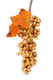 Golden grapes Stock Image
