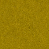 Golden Grass Field Texture Stock Image