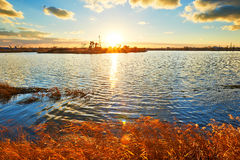 The golden grass lake pumping unit Royalty Free Stock Image