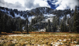 Golden Grass and Snowy Peaks. Early winter snow on Dog Lake with a meadow and clouds in the sky this lake is just above Brighton Utah USA the ski resort Royalty Free Stock Image