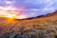 Golden grasslands at sunset, south San Francisco bay area, San Jose, California royalty free stock image
