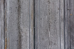 Golden gray wood texture. Abstract background Royalty Free Stock Photo