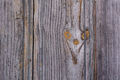 Golden Gray wood texture. Abstract background Stock Photography