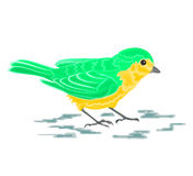 Golden-green bird. Vector illustration eps 8  without gradients Royalty Free Stock Photos