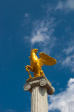 Golden griffin Stock Image