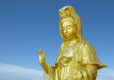 Golden guanyin Royalty Free Stock Photo