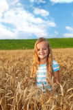 Golden hair girl on wheat field Stock Images