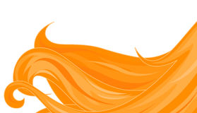 Golden Hairs Stock Image