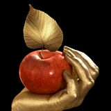 Golden hand and apple Royalty Free Stock Photos