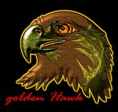 Golden Hawk Royalty Free Stock Image