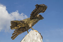 Golden hawk Royalty Free Stock Images