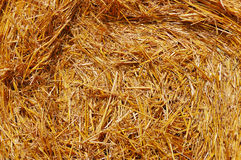 Golden hay bale close-up Royalty Free Stock Photography