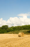 Golden hay bale in countryside Stock Photography