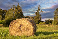 Golden Hay Bale  in the countryside Stock Photo