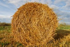 Golden hay bale on sky background Stock Photos
