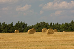 Golden hay bales Stock Photos