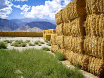 Golden Hay Bales Stock Images