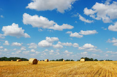 Golden hay bales against a picturesque cloudy sky Stock Image