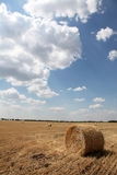 Golden hay bales in the countryside Stock Photos