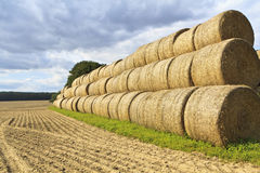 Golden Hay Bales in the countryside Stock Photography