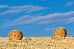 Golden hay bales in field Royalty Free Stock Image