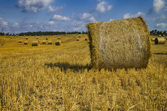 Golden hay bales in Polish countryside Stock Images