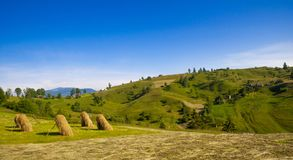 Golden Hayloft on the Summer Mountain Meadow Royalty Free Stock Photos