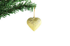 Golden heart hanging on branch Christmas tree. Stock Photo