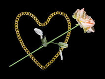 Golden heart and rose. Isolated on black Royalty Free Stock Photo