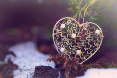 Golden heart shape on a gree tree. Golden heart shape on tree branch hanging Stock Photography