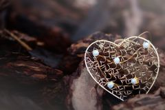 Golden heart shape. Laying on brown tree barks Stock Photo