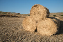 Golden Hey bales after harvesting Stock Photo