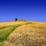The hill of loneliness stock image