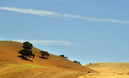 Golden hills. Golden california hills royalty free stock photos