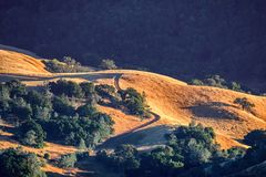 Golden hills bathed in a sunset light royalty free stock photography