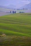 Golden hills Royalty Free Stock Photo