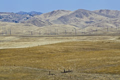 Golden Hills of Northern California. The burned out grasses of fields of the central portion of Northern California, parched by the summer sun and lack of water Royalty Free Stock Images