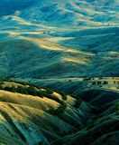 Golden hills under the evening sun Stock Photos