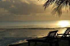 Golden holiday moods. Golden moments as sun sets , North shore Zanzibar Royalty Free Stock Photos