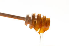 Golden honey Royalty Free Stock Photo