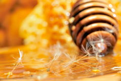 Golden honey Stock Photo