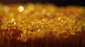 Golden honey comb texture background. Macro of honey comb cells with blurred background royalty free stock photo