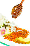 Golden honey and flowers Royalty Free Stock Photography