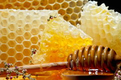 Golden honey Stock Photos