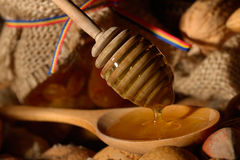 Golden honey and shelled fruits Royalty Free Stock Photography