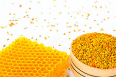 Golden honeycomb and yellow pollen on  white background Stock Photos