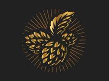 Golden hop - vector illustration on black background. Golden hop - vector illustration, design on black background royalty free illustration