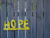 Golden hope Stock Photo
