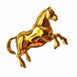 Golden Horse Stock Photos