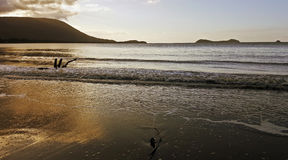 Golden hour on the beach in Cairns Royalty Free Stock Photography